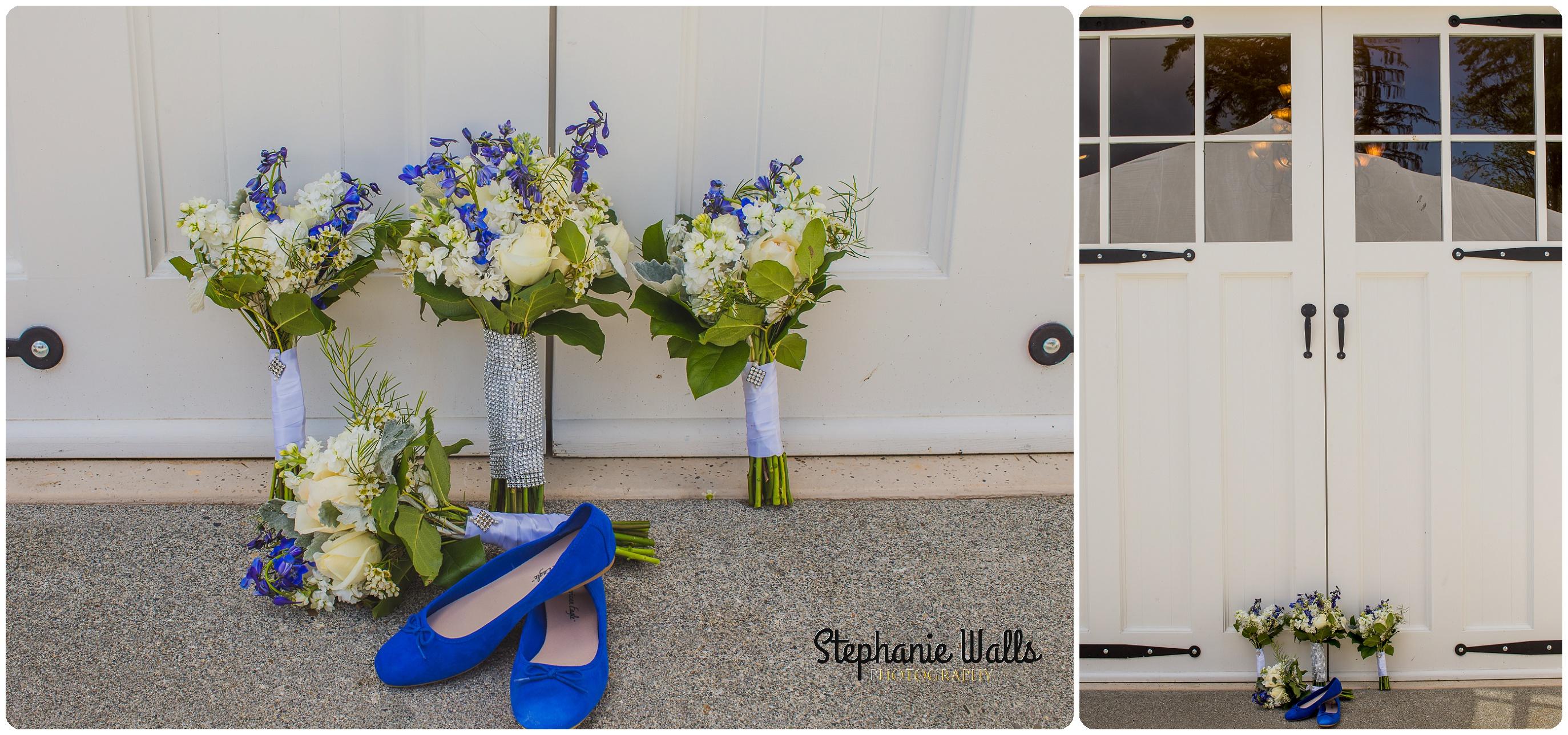 McCaslin Wedding047 Blue Skys ahead | Natures Connection Place | Arlington Wedding Photographer
