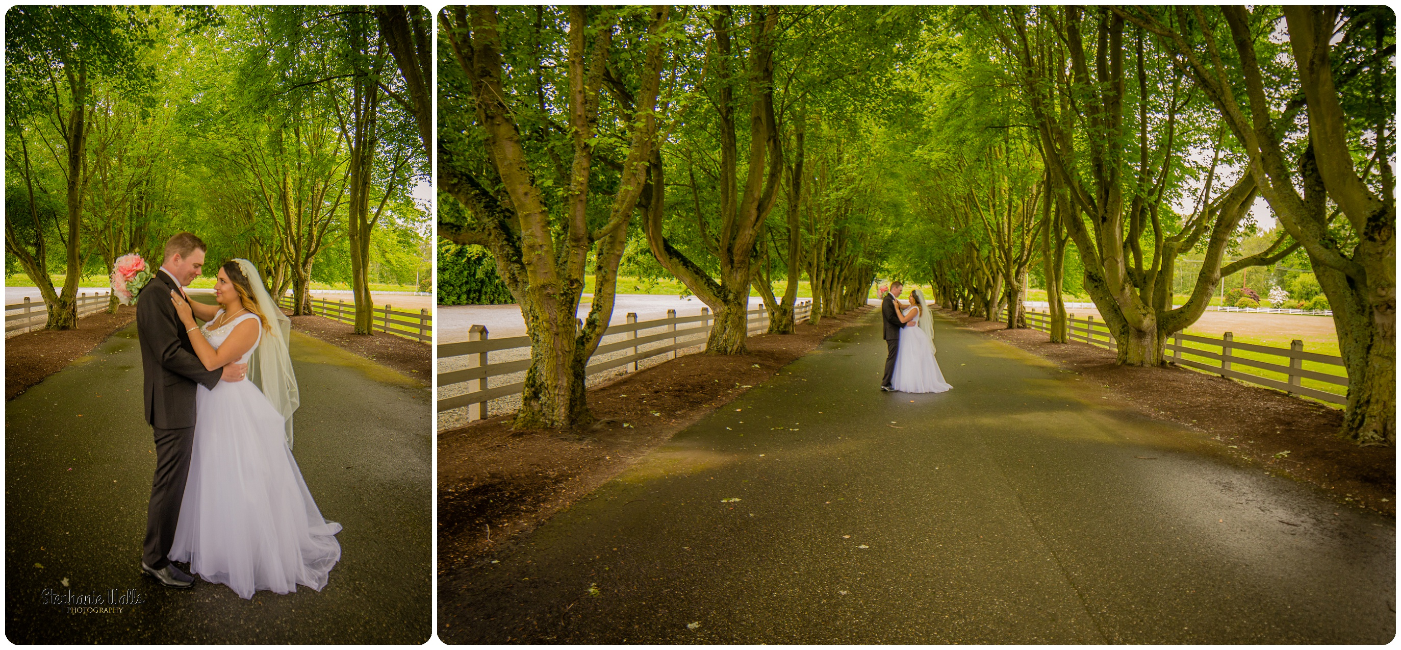 Miller Wedding298 WHERE EVER YOU GO | MAPLEHURST FARMS GUESTHOUSE | STEPHANIE WALLS PHOTOGRAPHY