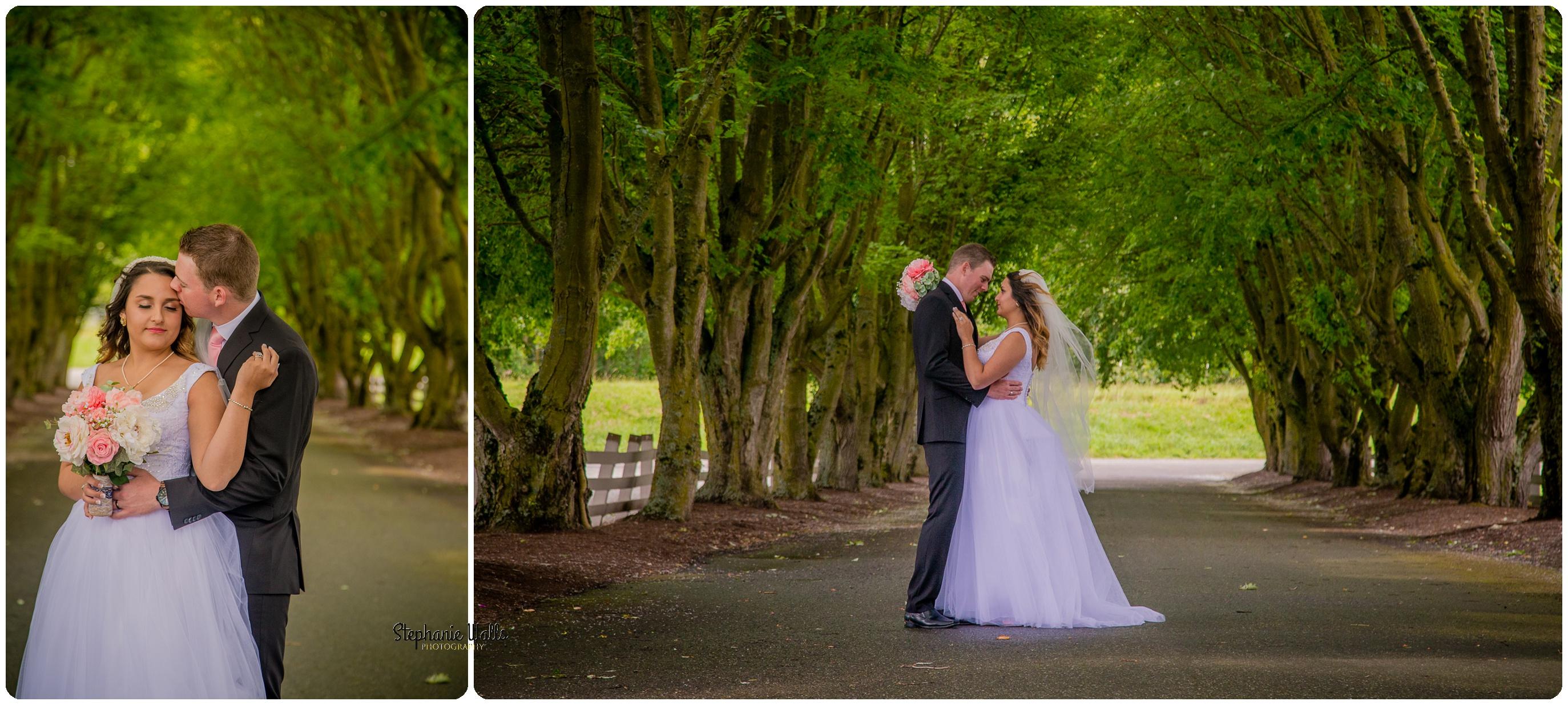 Miller Wedding313 WHERE EVER YOU GO | MAPLEHURST FARMS GUESTHOUSE | STEPHANIE WALLS PHOTOGRAPHY