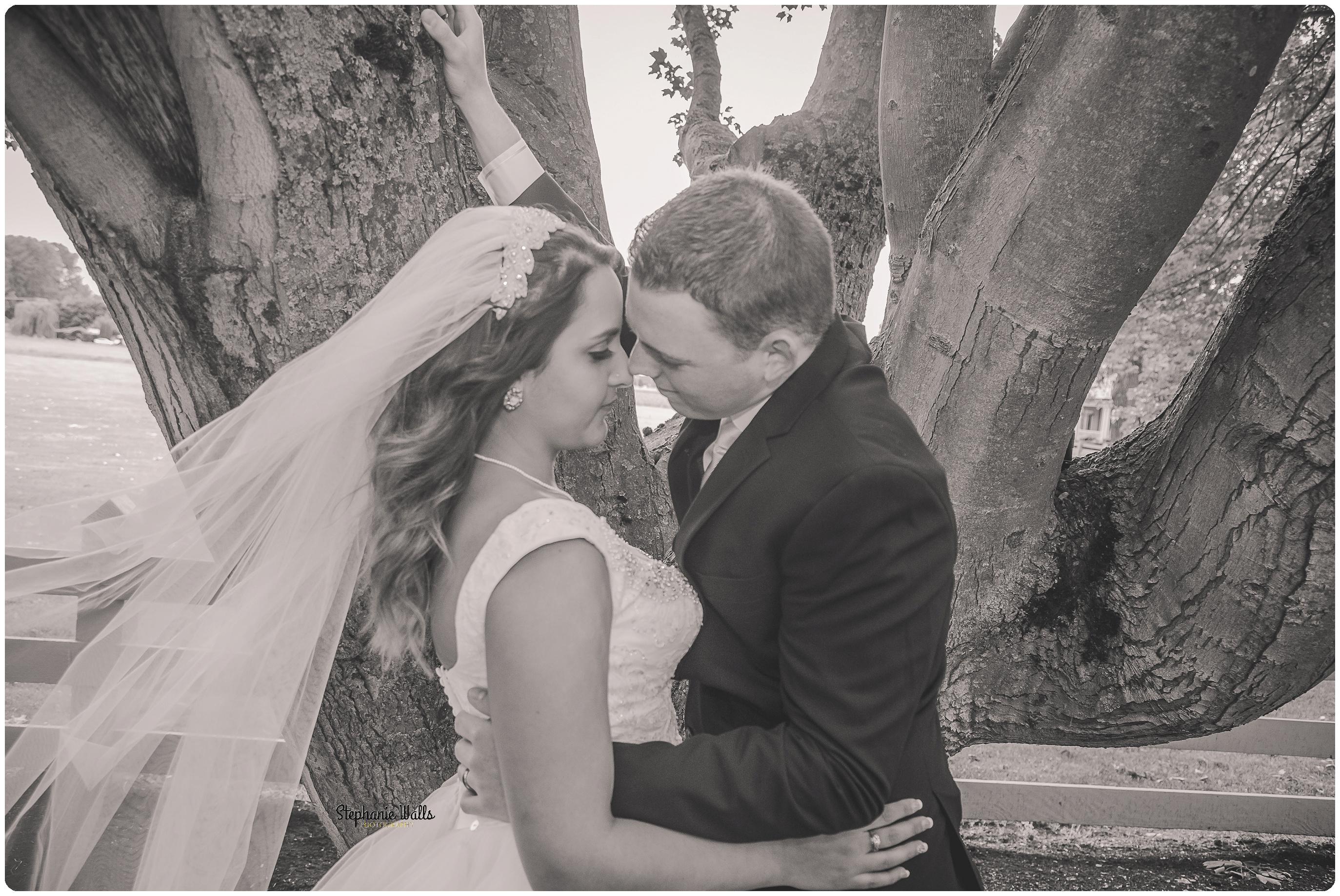 Miller Wedding331 WHERE EVER YOU GO | MAPLEHURST FARMS GUESTHOUSE | STEPHANIE WALLS PHOTOGRAPHY