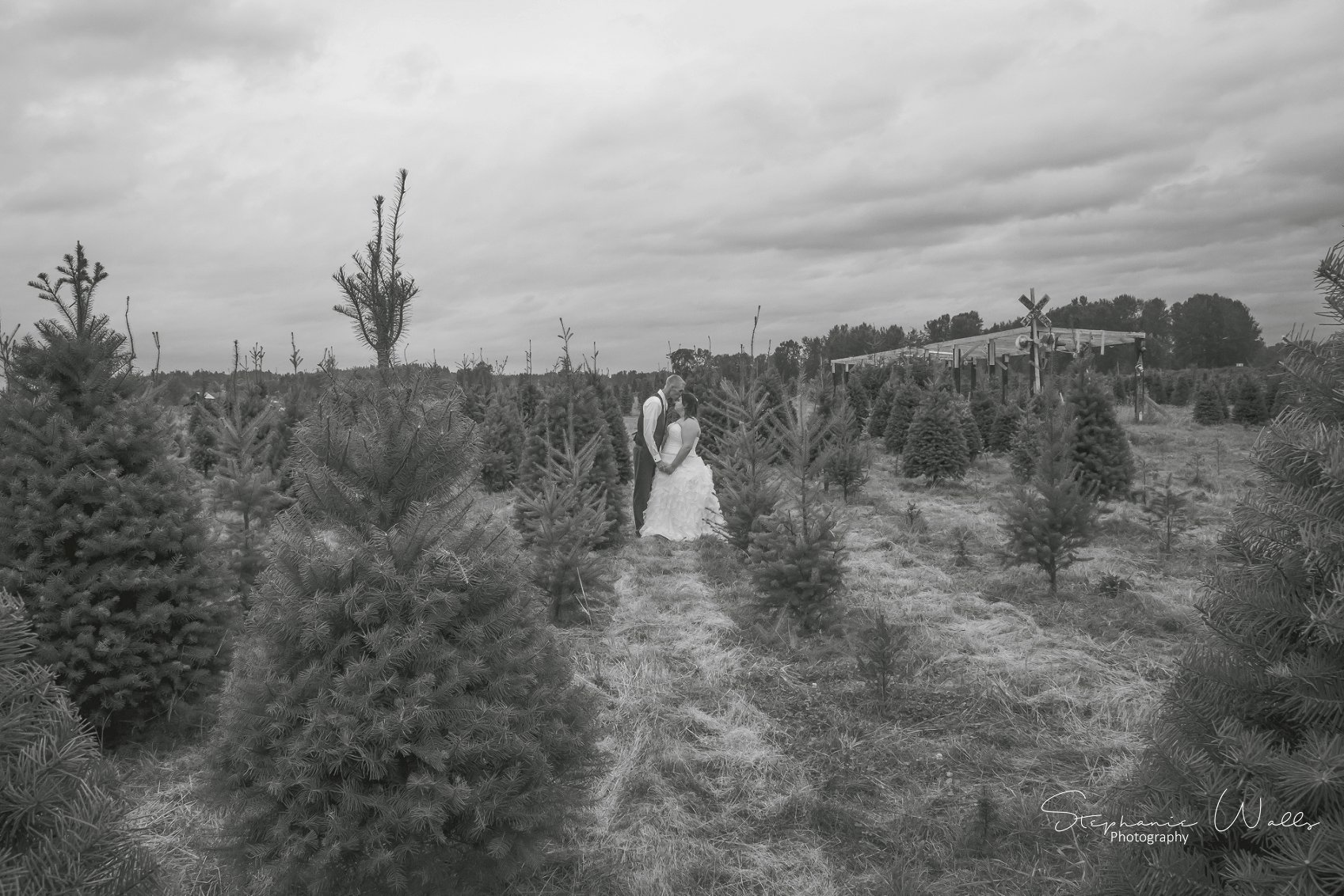 Kimble Wedding 102 1 Marlena & Allans | Snohomish Red Barn Events (Stocker Farms) | Snohomish, Wa Wedding Photographer