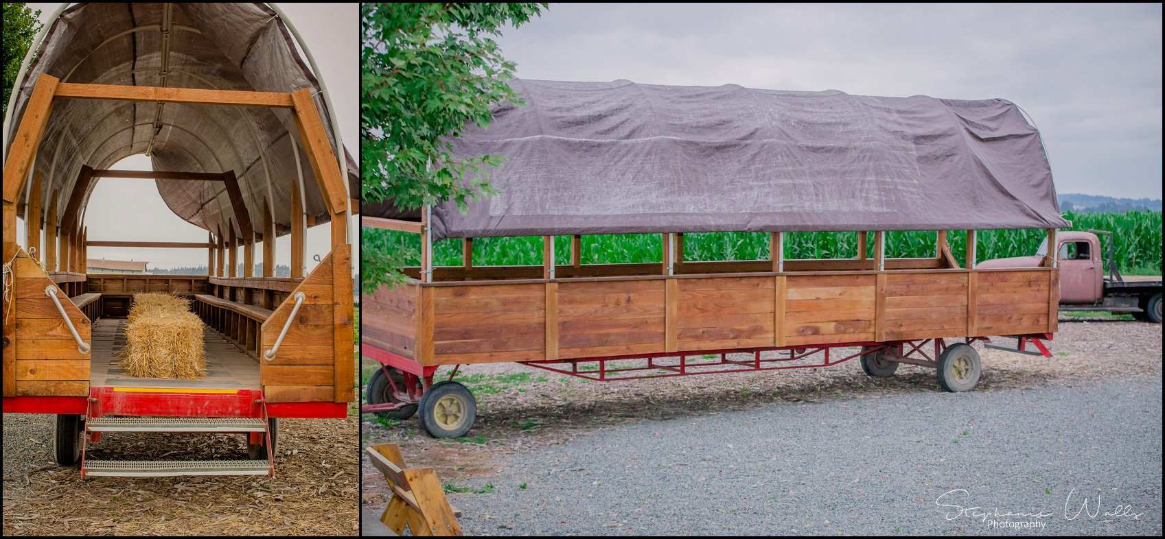 Kimble Wedding 119 Marlena & Allans | Snohomish Red Barn Events (Stocker Farms) | Snohomish, Wa Wedding Photographer